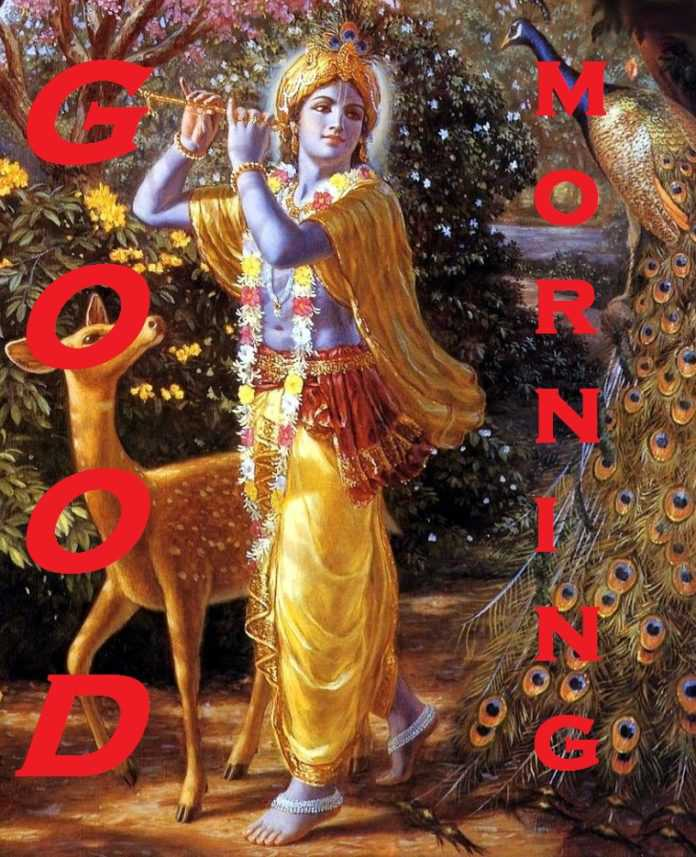 GOOD MORNING LORD KRISHNA IMAGES