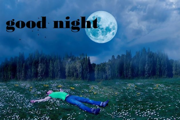 good night full moon